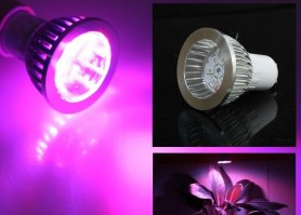 LED bulb 7W - lighting for plants