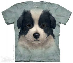 Shirt animaux Salut-tech - Border collie chiot