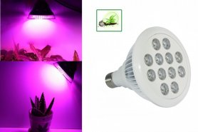 Fluorescent grow lights 36W (12x3W)