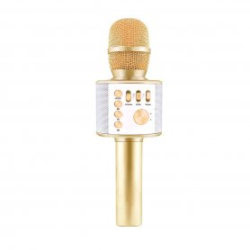 Bluetooth mic and speaker 5W - wireless microphone for party