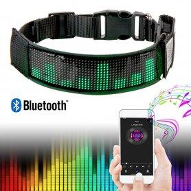 Collier de chien LED programmable via smartphone avec écran - RVB