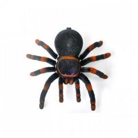 Spider tarantula with the remote control