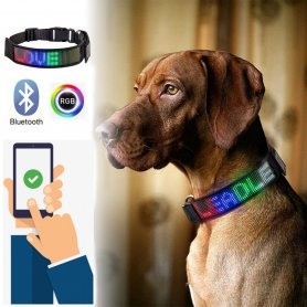 Guler LED pentru câini programabil prin smartphone cu afișaj - RGB