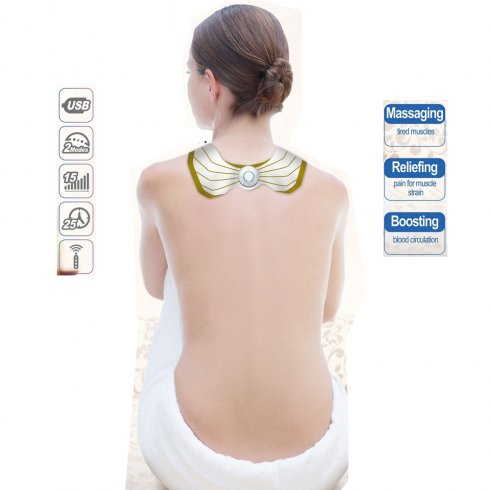 EMS massage device for the back and shoulder blades