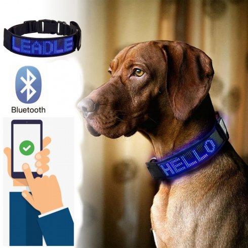 Light up dog collarprogrammable via smartphone with single colour display