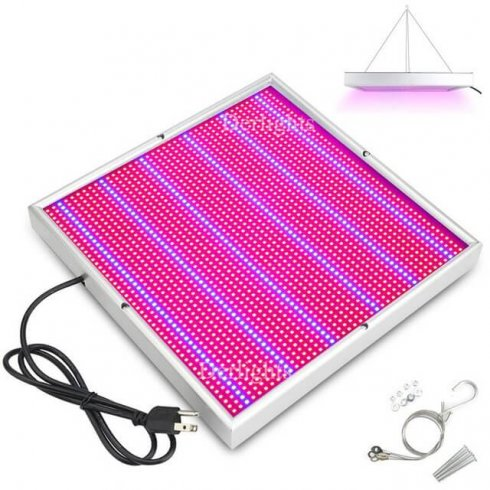 Growing plants under artificial lighting - 200W LED panel