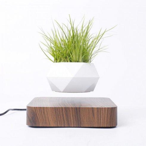 Плаваща саксия за растения - левитираща на 360 ° саксия върху магнитна дървена основа