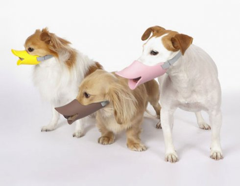 Quack - Duck protective muzzle for dogs