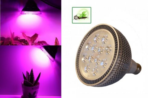 LED Growing Light 36W (12x3W)