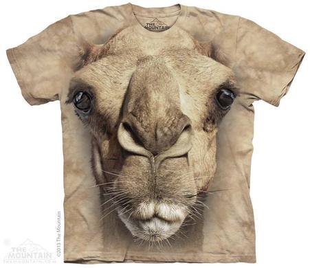 Eco T-shirt - Camel