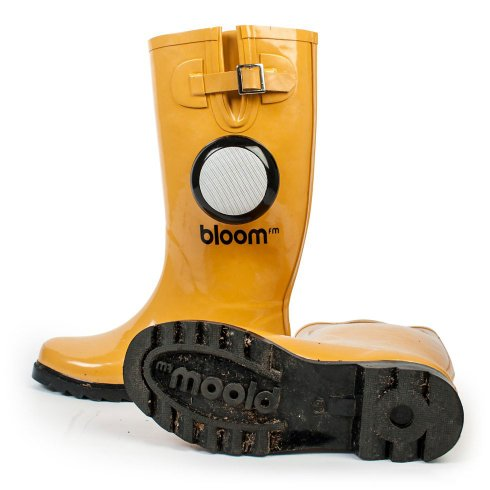 BLOOM BLUETOOTH FM - playing boots