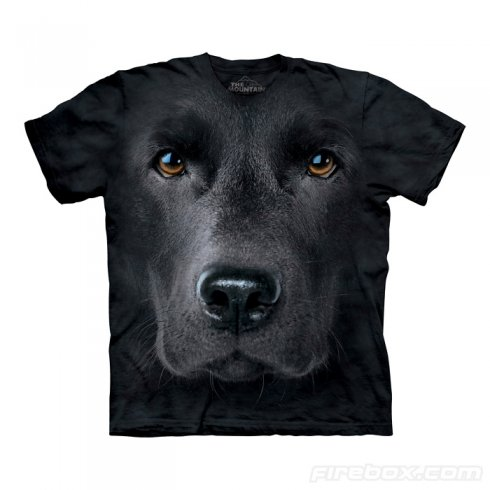 Hi-tech cool Tshirts Labrador